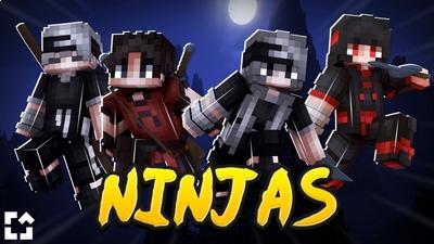 Ninjas on the Minecraft Marketplace by Fall Studios