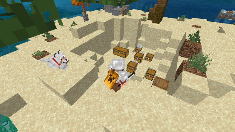 Pirate Treasure on the Minecraft Marketplace by MrAniman2