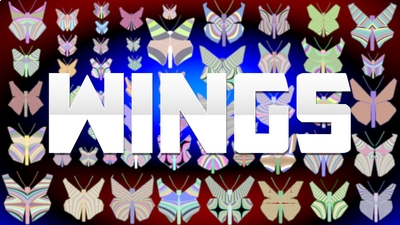 Wings on the Minecraft Marketplace by The World Foundry