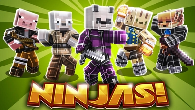 Ninjas on the Minecraft Marketplace by BLOCKLAB Studios