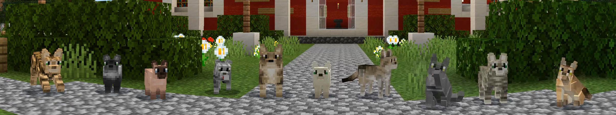 Pets Cats In Minecraft Marketplace Minecraft