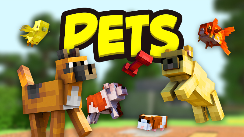 Pets on the Minecraft Marketplace by Team Vaeron